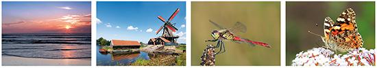 Cursus fotografie Heerenveen