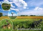 Ansichtkaart groeten uit Friesland, postcard, Friesland, Postkarte Friesland
