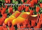 Ansichtkaart klompen in tulpenveld