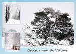 Ansichtkaart winter op de Veluwe, postcard winter on the Veluwe, Postkarte winter auf der Veluwe