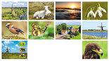 Kaartenset Nederland - Postcard set Dutch - Postkarten Set Niederländischen