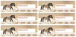 Postcard-ID-stickers-6x-Konikpaard