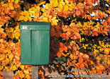 Herfstkaarten, Ansichtkaart groene brievenbus, postcard green mailbox, postkarte Grüne Briefkasten