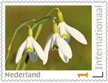 Postzegels voor Postcrossing - sneeuwklokjes
