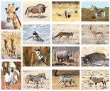 kaartenset Afrikaanse dieren - Postcard set African animals - Postkarten Set Afrikanische Tiere