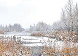 ansichtkaart winterslandschap, postcard winterslandscape, Postkarte Winterlandschaft