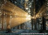 ansichtkaart zonsondergang Dwingelderveld, postcardsunset Dwingelderveld, Postkarte Sonnenuntergang Dwingelderveld