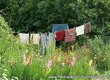 Ansichtkaartwaslijn, Postcard washing line, PostkarteWäscheleine