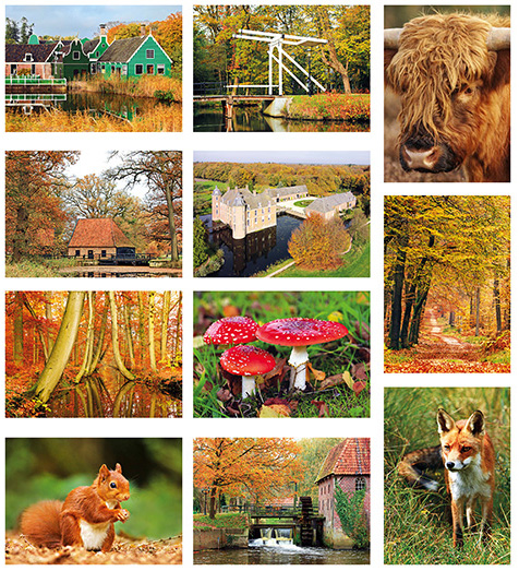 kaartenset herfst