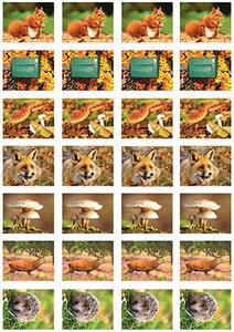 Herfst stickervel voor Postcrossing