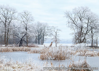 ansichtkaart winter tjasker Bolleveen Zeijen, postcardwinter landscape, Postkarte winter landschaft