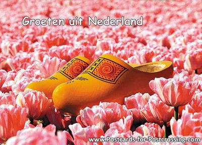 Ansichtkaart Groeten uit Nederland