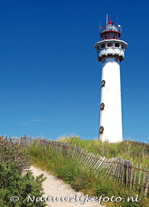 ansichtkaartvuurtoren Egmond aan Zee - postcard lighthouse Egmond aan Zee - postkarte leuchtturm Egmond aan Zee