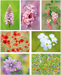 Postkaarten / ansichtkaarten set bloemen
