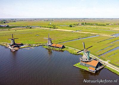ansichtkaart de Zaanse Schans - Zaandam, mill postcard, Mühle Postkarte