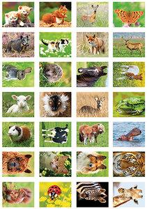 Dieren stickers, stickervel dieren