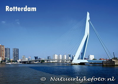 Ansichtkaart Rotterdam Erasmusbrug - Postkaart Rotterdam - Ansichtkaarten Rotterdam