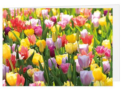 Wenskaart bloemen zonder tekst met enveloppe