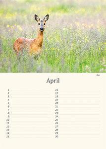 Verjaardagskalender dieren