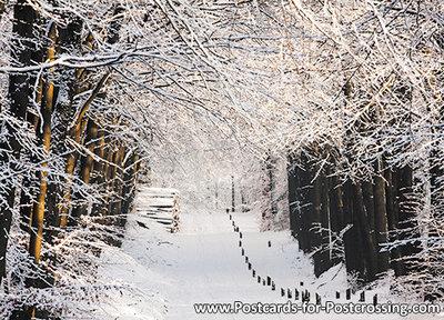 ansichtkaart winter laantje, postcardwinter lane, Postkarte winter lane