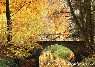 Herfstkaarten, ansichtkaartherfst Bruggetje, postcard Autumn bridge, postkarte Herbst Brücke