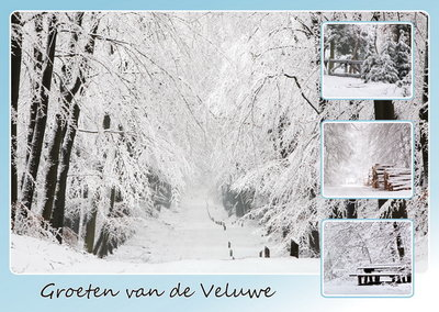 Ansichtkaart Veluwe in de winter, postcard Veluwe in winter, Postkarte Veluwe in winter