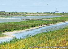 ansichtkaart het Wagejot  op Texel