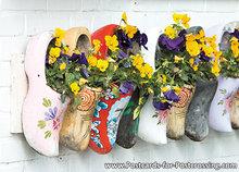 ansichtkaart typisch nederlands klompen met bloemen