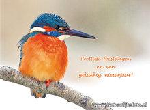 Goedkope kerstkaarten, ijsvogel in de sneeuw, Christmas card King fisher, Weihnachtskarten Eisvogel